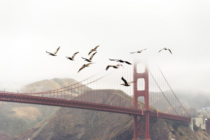 facts about the golden gate bridge